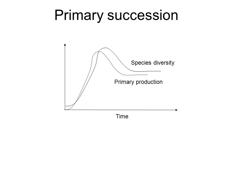 Primary succession Species diversity Time Primary production