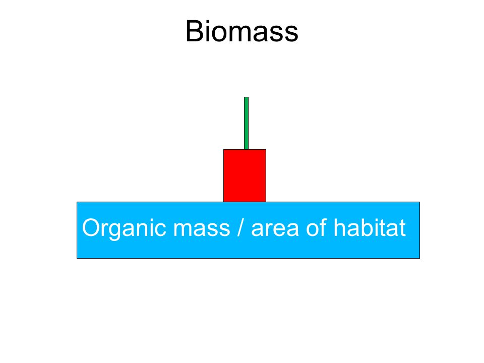 Biomass Organic mass / area of habitat
