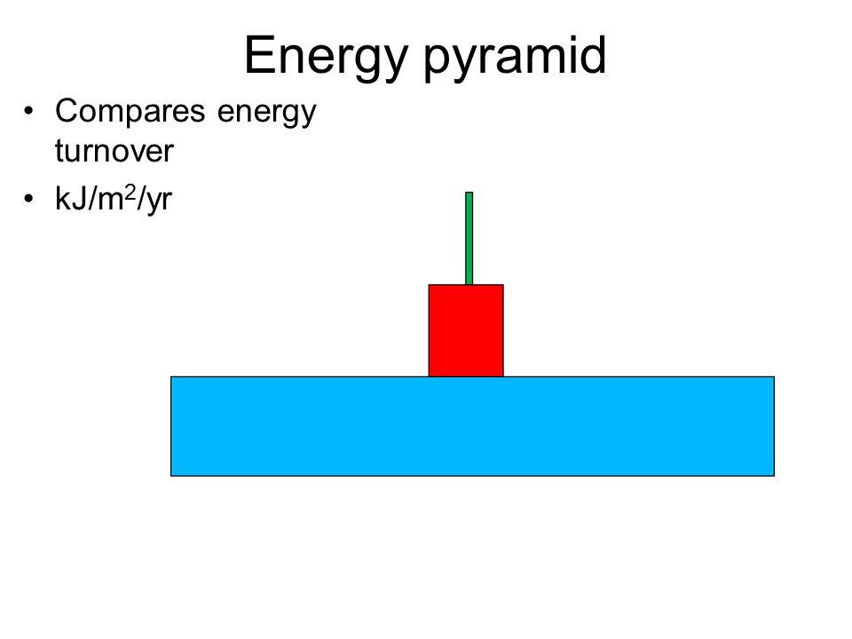 Energy pyramid Compares energy turnover kJ/m 2 /yr