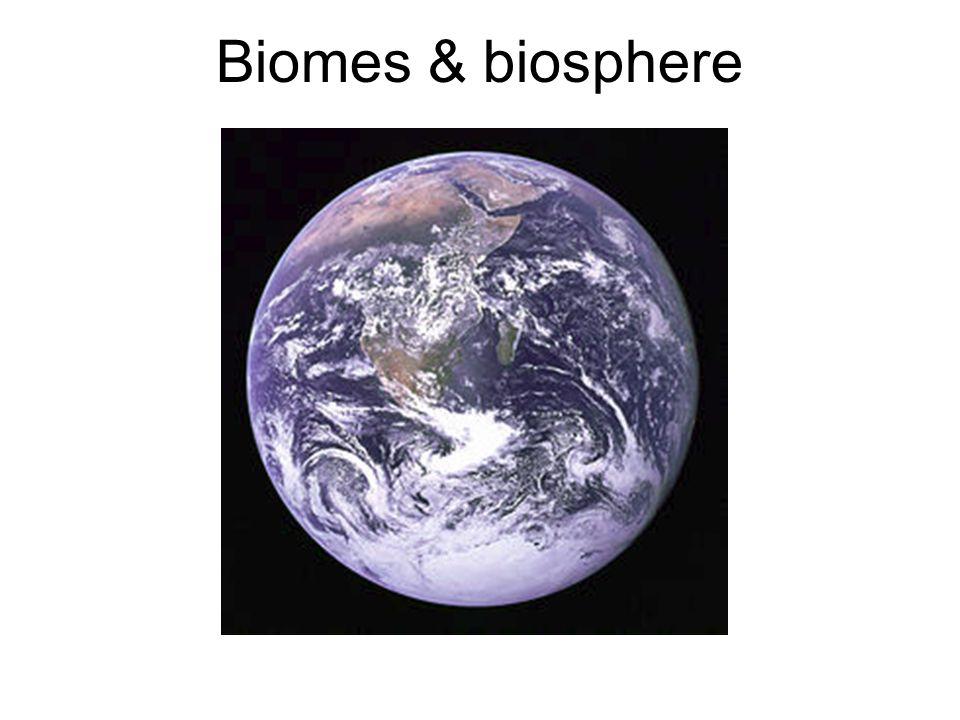 Biomes & biosphere