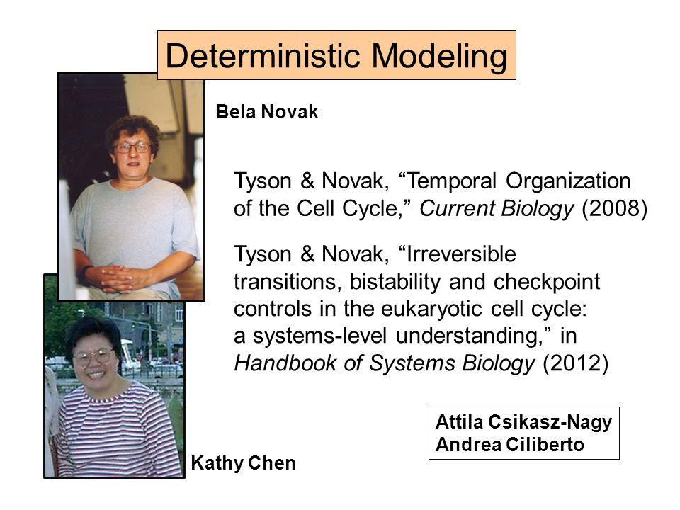 Multisite Phosphorylation Model (Barik, et al.) Clb2 Cdh1 bistable switch
