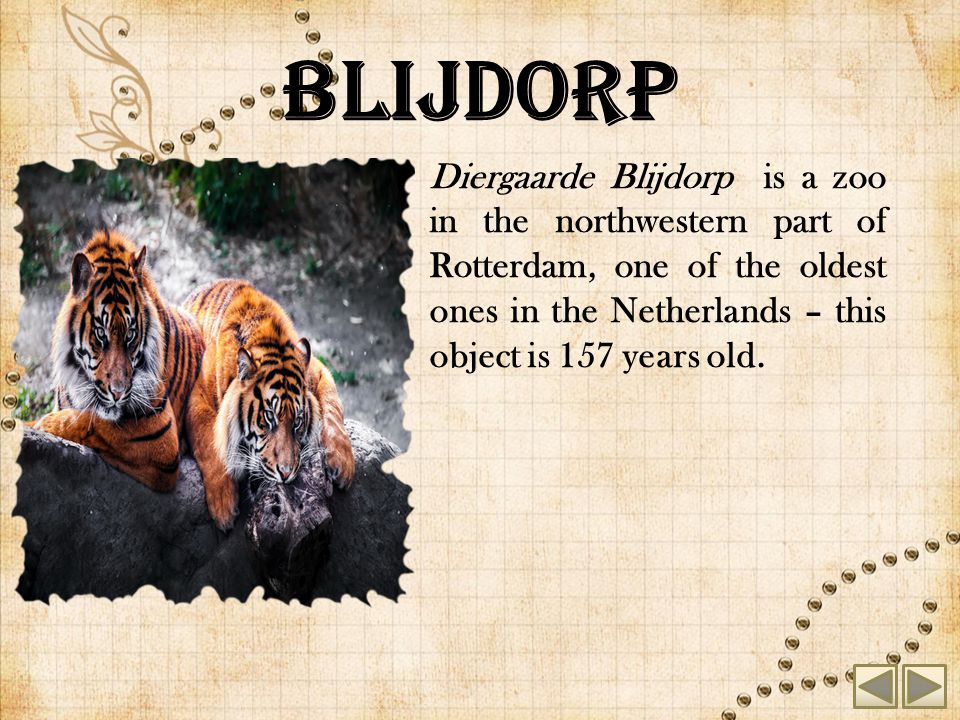 Blijdorp Diergaarde Blijdorp is a zoo in the northwestern part of Rotterdam, one of the oldest ones in the Netherlands – this object is 157 years old.