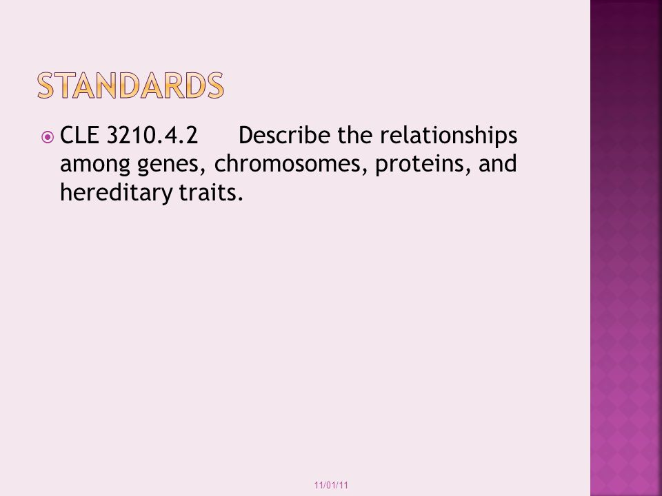 11/01/11 Chromosomes separate at the centromere, and the sister chromatids are pulled toward opposite ends of the cell.
