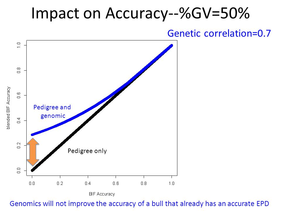 Impact on Accuracy--%GV=50% Genetic correlation=0.7 Genomics will not improve the accuracy of a bull that already has an accurate EPD Pedigree only Pe