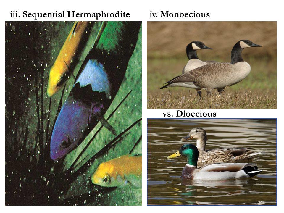iii. Sequential Hermaphroditeiv. Monoecious vs. Dioecious