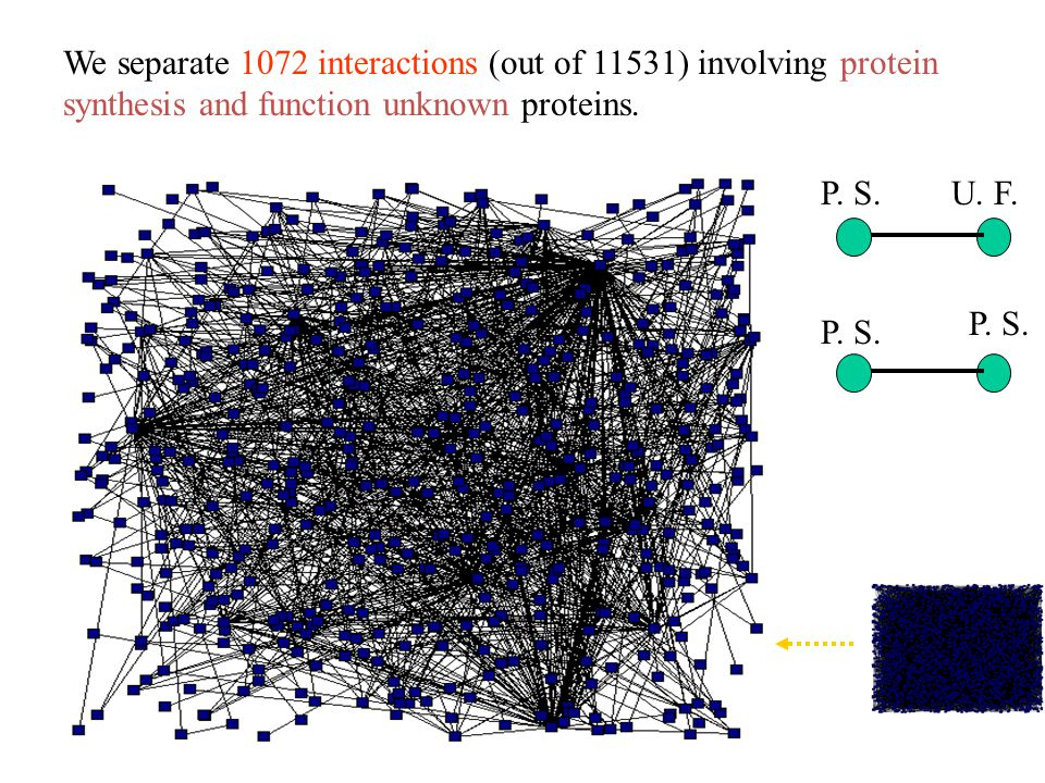 We separate 1072 interactions (out of 11531) involving protein synthesis and function unknown proteins.