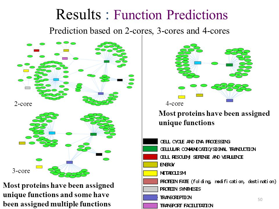 50 Most proteins have been assigned unique functions and some have been assigned multiple functions 2-core 3-core Prediction based on 2-cores, 3-cores and 4-cores Results : Function Predictions 4-core Most proteins have been assigned unique functions
