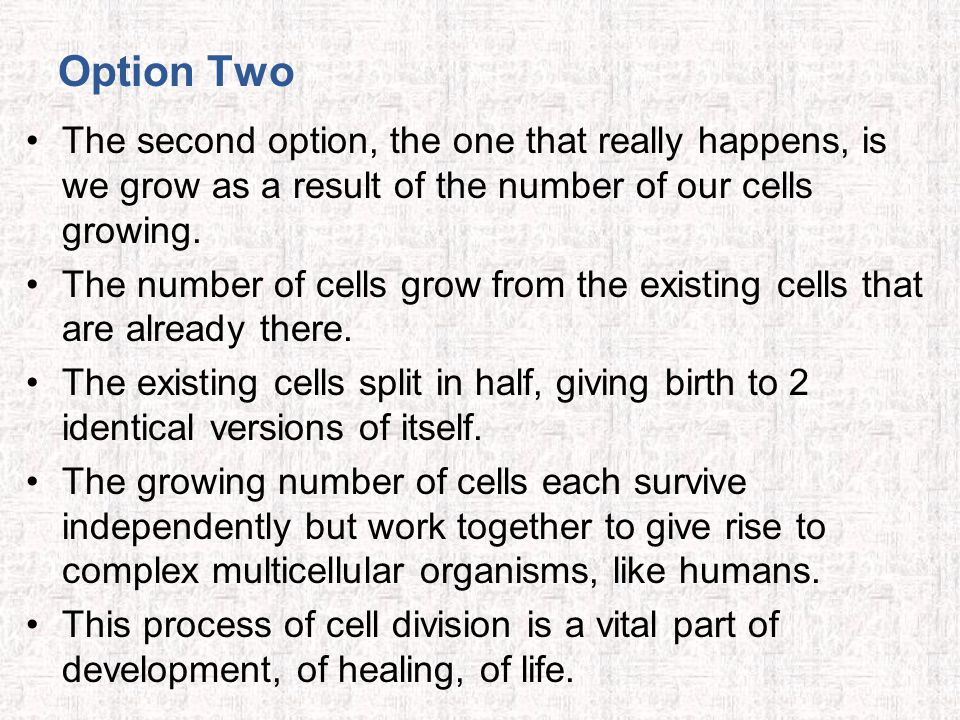 Option Two The second option, the one that really happens, is we grow as a result of the number of our cells growing. The number of cells grow from th