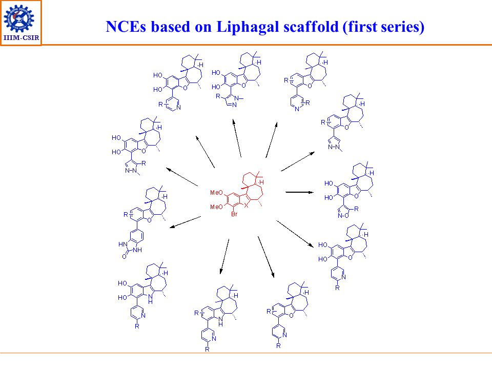 IIIM-CSIR NCEs based on Liphagal scaffold (first series)