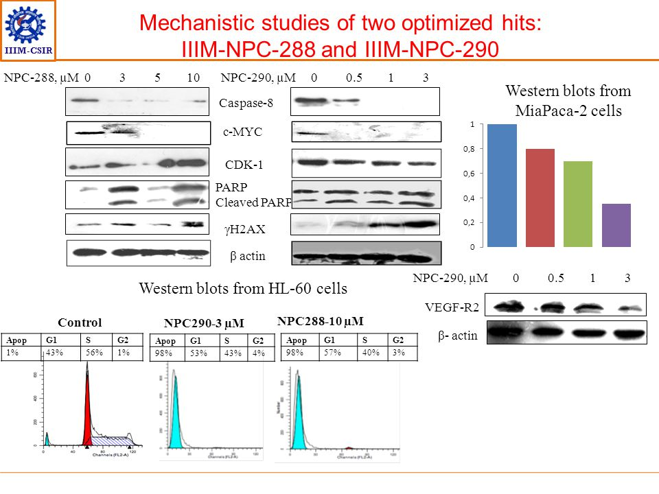 IIIM-CSIR Mechanistic studies of two optimized hits: IIIM-NPC-288 and IIIM-NPC-290 Caspase-8 c-MYC CDK-1 PARP Cleaved PARP γH2AX β actin NPC-290, µM 0