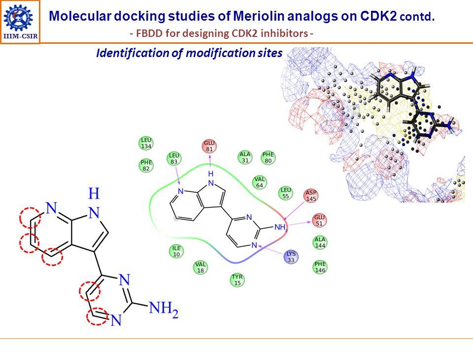 IIIM-CSIR Identification of modification sites Molecular docking studies of Meriolin analogs on CDK2 contd. - FBDD for designing CDK2 inhibitors -