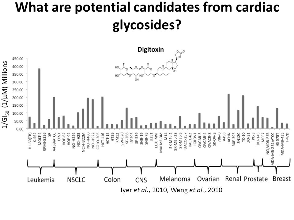 What are potential candidates from cardiac glycosides Iyer et al., 2010, Wang et al., 2010