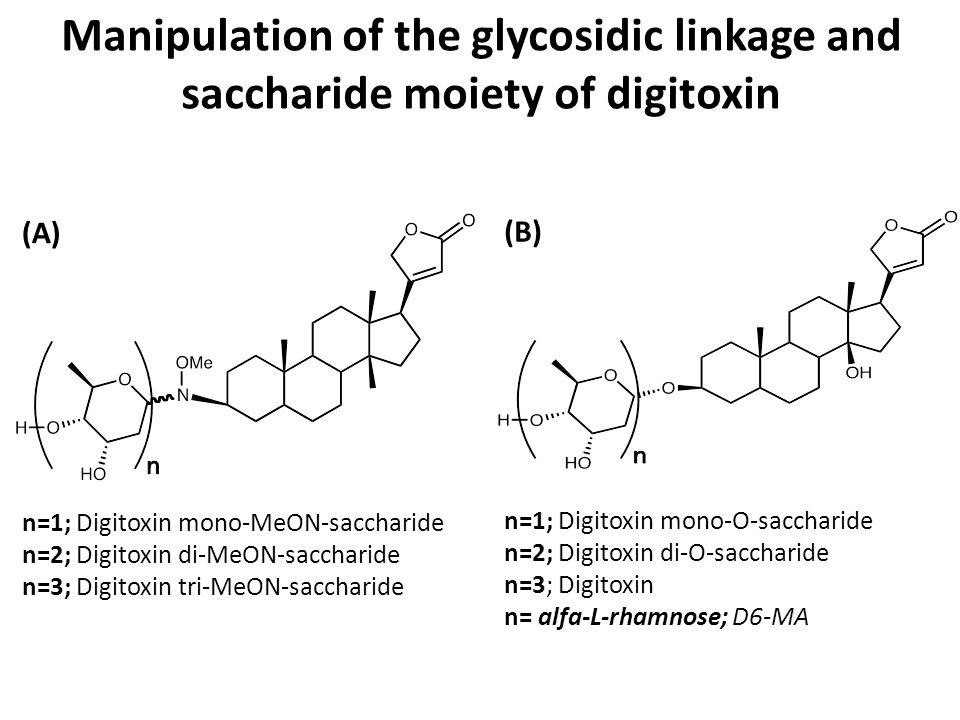 Manipulation of the glycosidic linkage and saccharide moiety of digitoxin n=1; Digitoxin mono-MeON-saccharide n=2; Digitoxin di-MeON-saccharide n=3; Digitoxin tri-MeON-saccharide (A) n=1; Digitoxin mono-O-saccharide n=2; Digitoxin di-O-saccharide n=3; Digitoxin n= alfa-L-rhamnose; D6-MA (B)