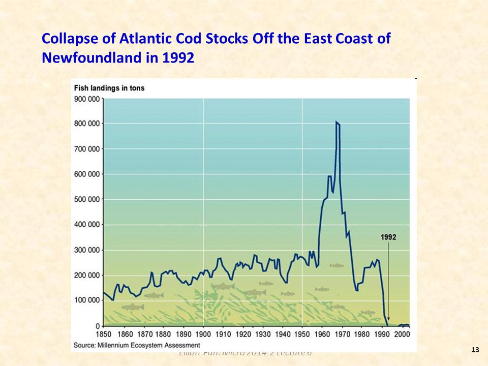 Elliott Fan: Micro 2014-2 Lecture 6 Collapse of Atlantic Cod Stocks Off the East Coast of Newfoundland in 1992 13
