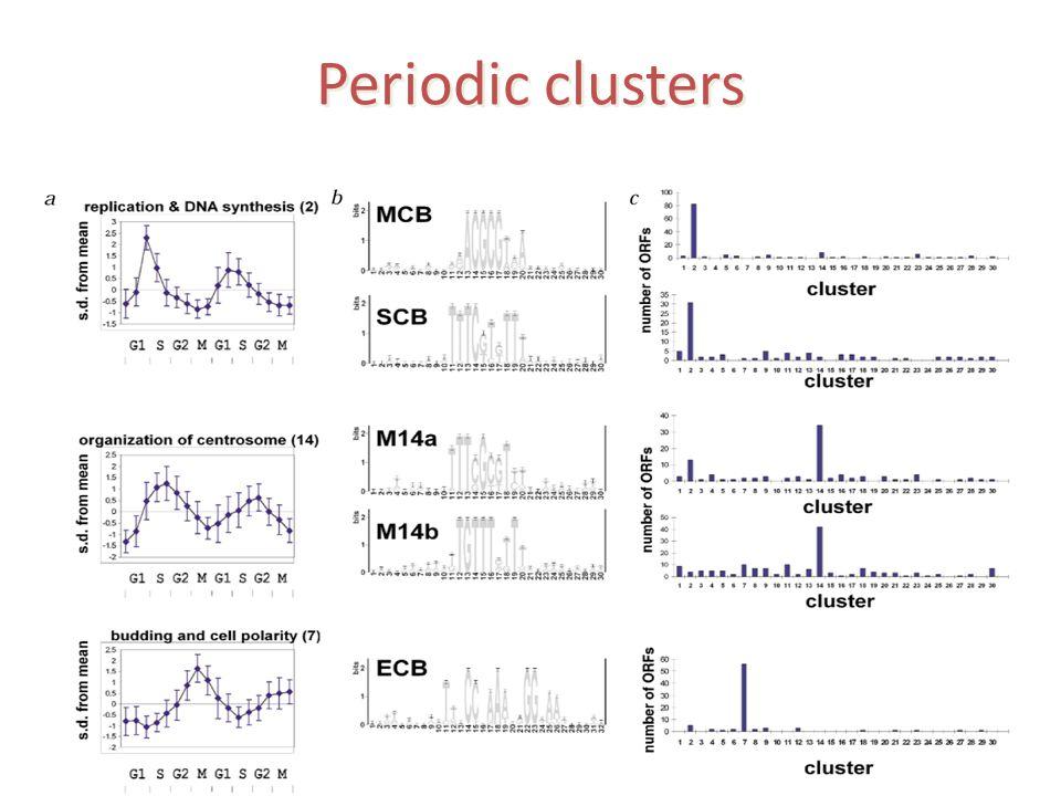 Periodic clusters