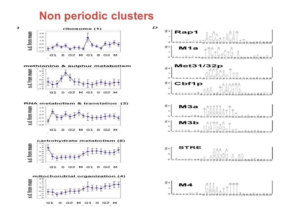 Non periodic clusters