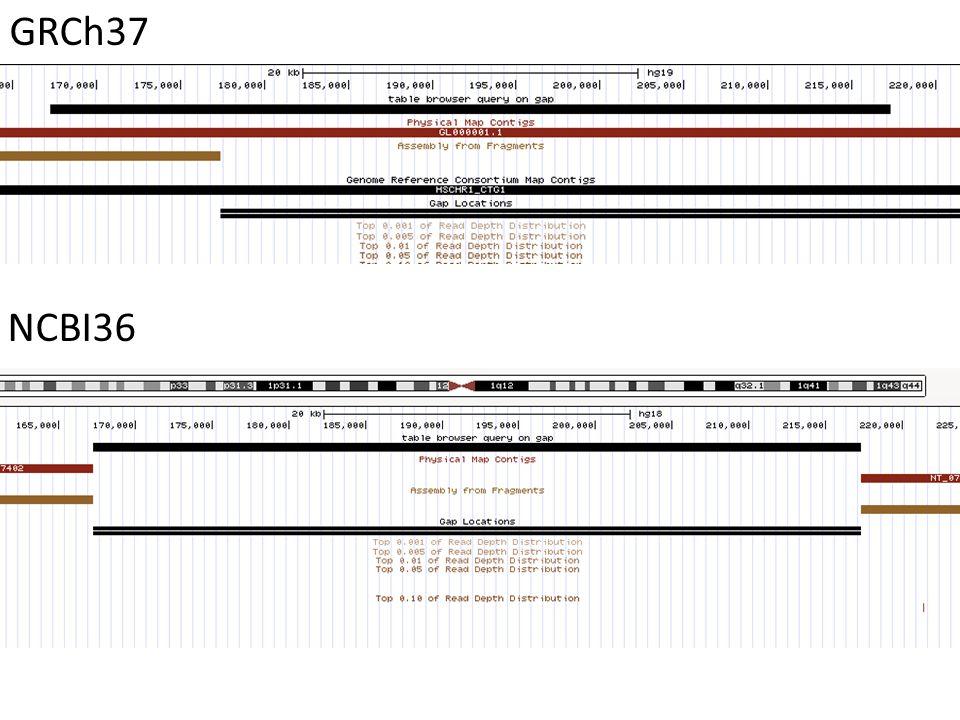 GRCh37 NCBI36