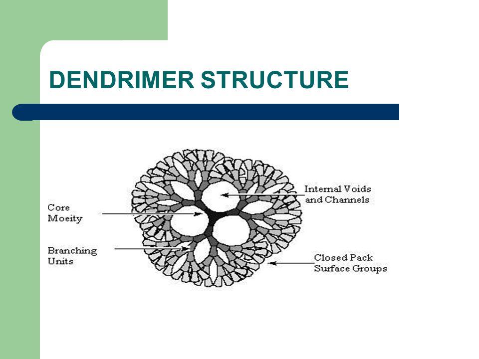 DENDRIMER STRUCTURE