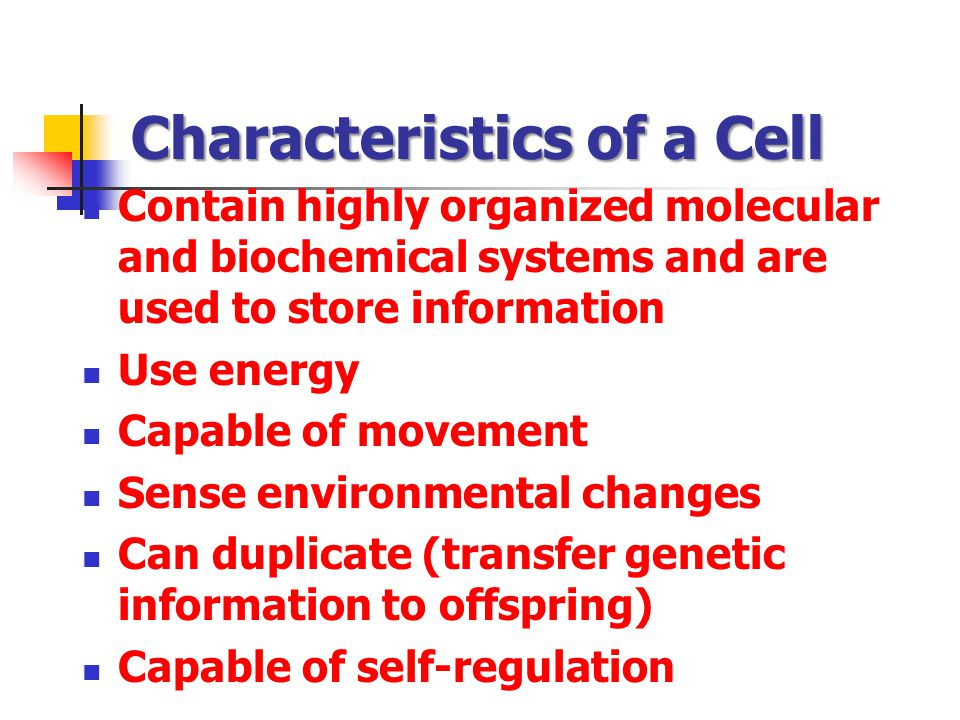Characteristics of a Cell Contain highly organized molecular and biochemical systems and are used to store information Use energy Capable of movement