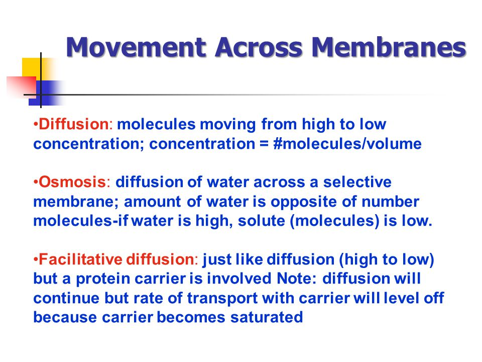 Movement Across Membranes Diffusion: molecules moving from high to low concentration; concentration = #molecules/volume Osmosis: diffusion of water ac