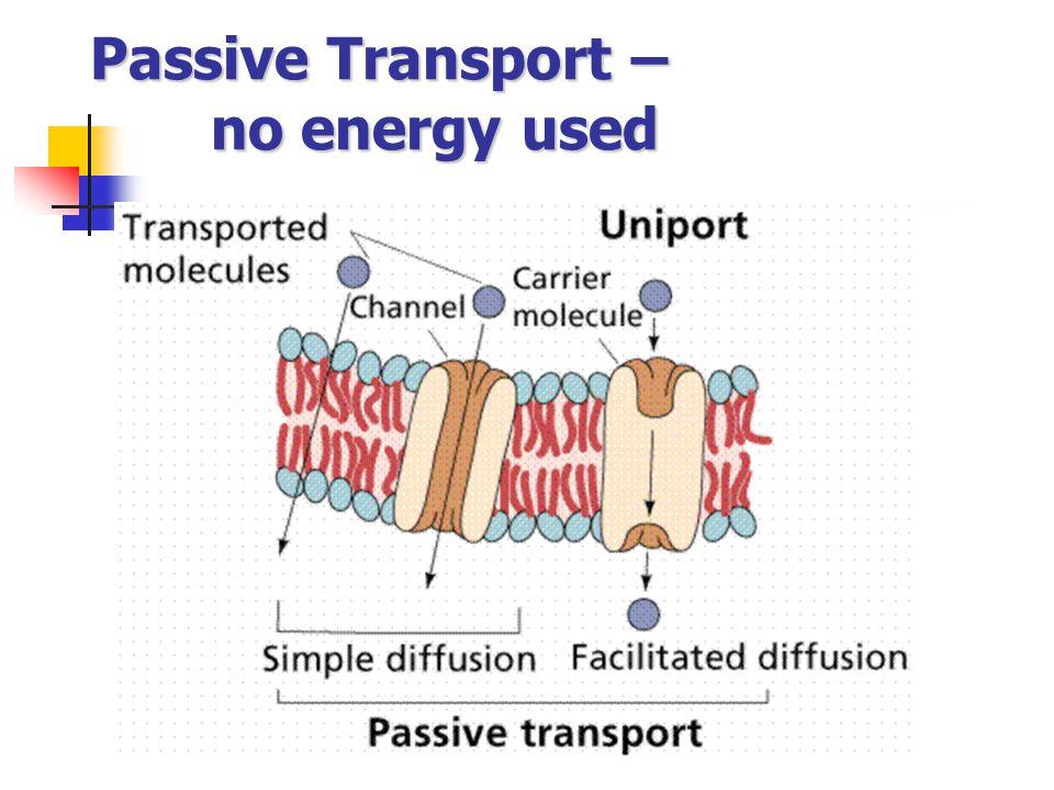 Passive Transport – no energy used