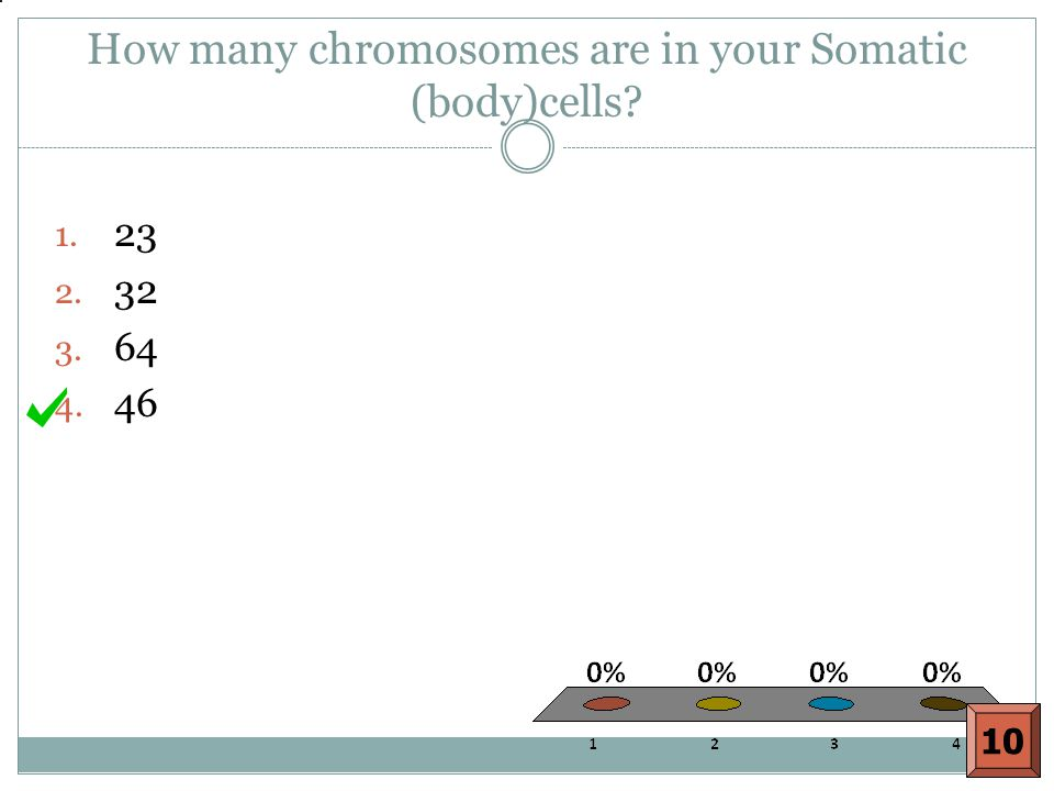 How many chromosomes are in your Somatic (body)cells? 1. 23 2. 32 3. 64 4. 46 10