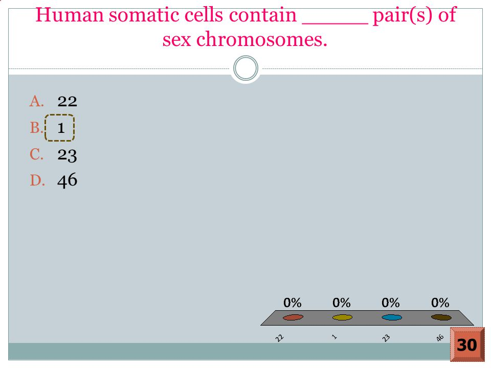 Human somatic cells contain _____ pair(s) of sex chromosomes. A. 22 B. 1 C. 23 D. 46 30
