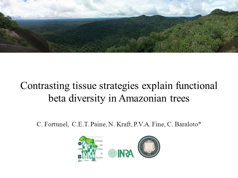 Global changes in the tropics Land use changes through logging, deforestation, fragmentation, and fire use Climate changes with increases in extreme climatic events (e.g.