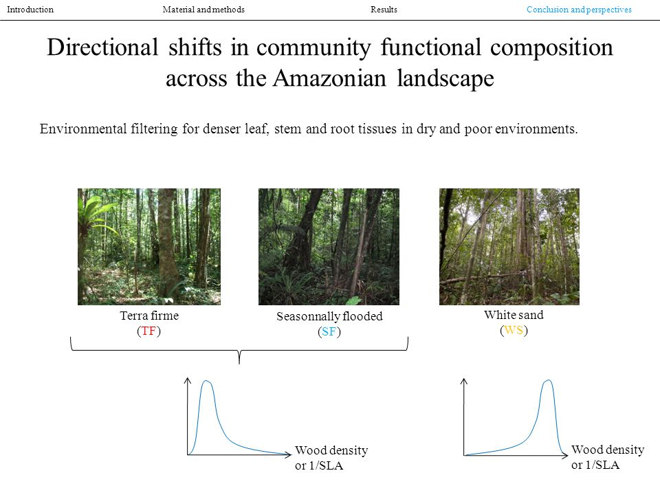 Directional shifts in community functional composition across the Amazonian landscape Environmental filtering for denser leaf, stem and root tissues in dry and poor environments.