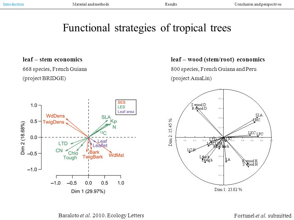 Functional strategies of tropical trees leaf – stem economics 668 species, French Guiana (project BRIDGE) Baraloto et al.