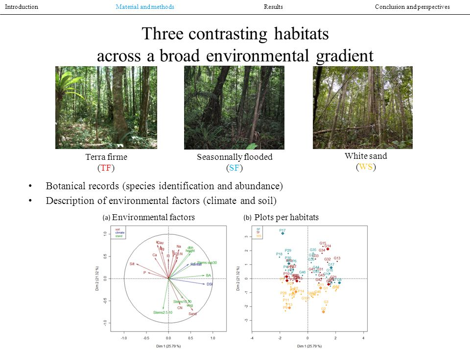 Functional trait measurements For each species in each plot, traits were measured at the level of: Leaf SLA, LA, toughness, thickness, LTD, LChl, LCC, LNC, LC:N, LPC, LKC, L 13 C, L 15 N Stem wood density, humidity Trunk bark thickness Root wood density, humidity Introduction Material and methodsResultsConclusion and perspectives