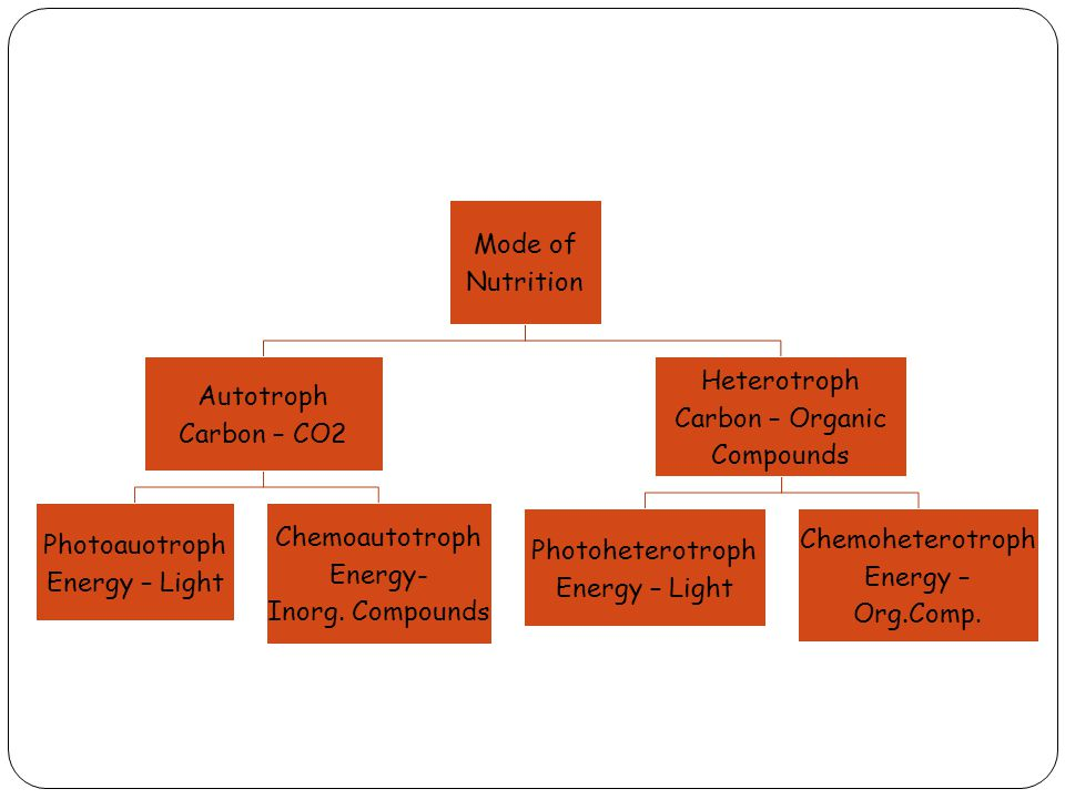 Mode of Nutrition Autotroph Carbon – CO2 Photoauotroph Energy – Light Chemoautotroph Energy- Inorg.