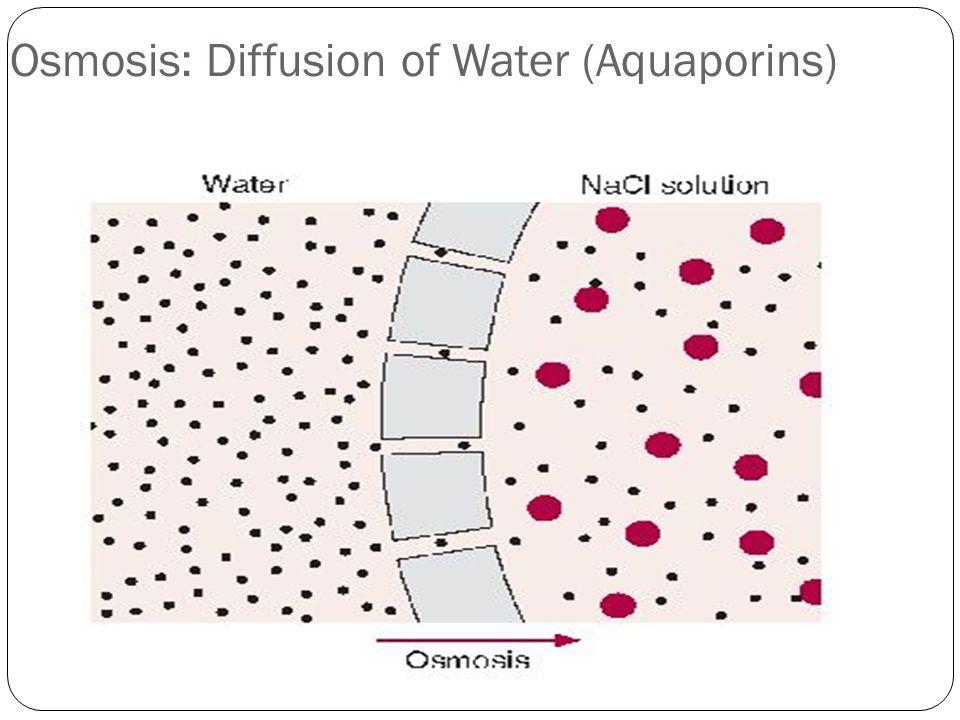 Osmosis: Diffusion of Water (Aquaporins)