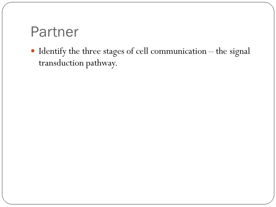 Partner Identify the three stages of cell communication – the signal transduction pathway.