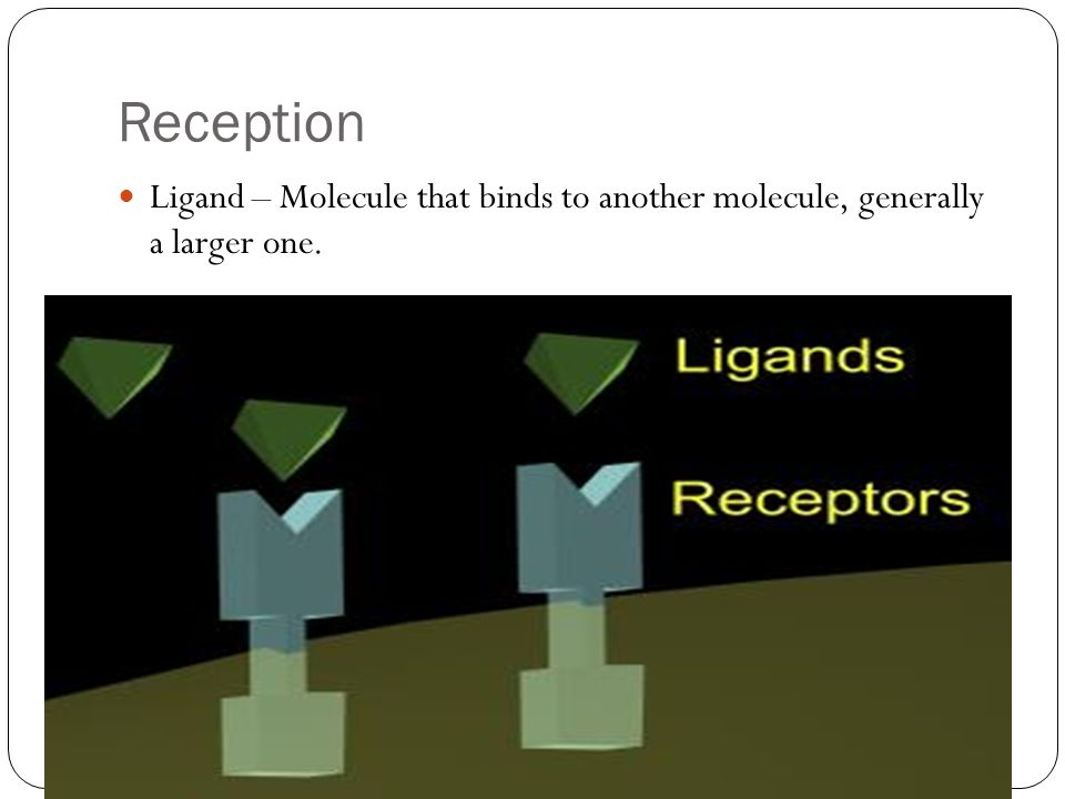 Reception Ligand – Molecule that binds to another molecule, generally a larger one.