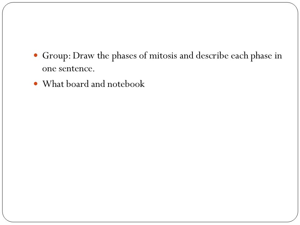 Group: Draw the phases of mitosis and describe each phase in one sentence. What board and notebook