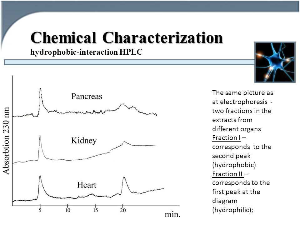 Chemical Characterization hydrophobic-interaction HPLC The same picture as at electrophoresis - two fractions in the extracts from different organs Fraction I – corresponds to the second peak (hydrophobic) Fraction II – corresponds to the first peak at the diagram (hydrophilic);