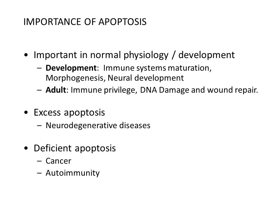 APOPTOSIS Programmed cell death Orderly cellular self destruction Process: as crucial for survival of multi-cellular organisms as cell division