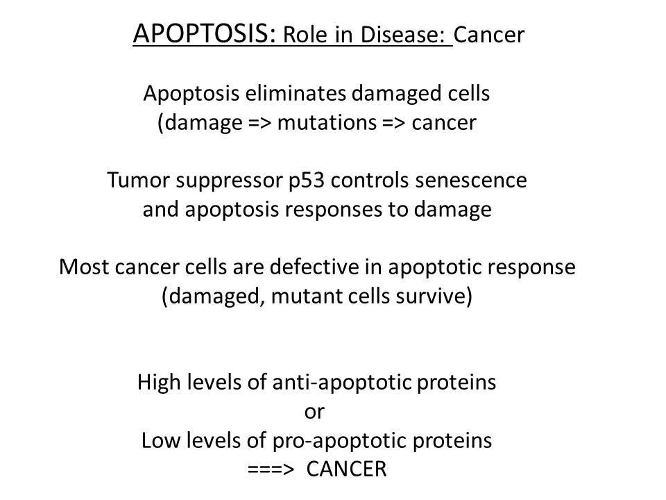 APOPTOSIS: Role in Disease TOO MUCH: Tissue atrophy TOO LITTLE: Hyperplasia Neurodegeneration Thin skin etc Cancer Athersclerosis etc