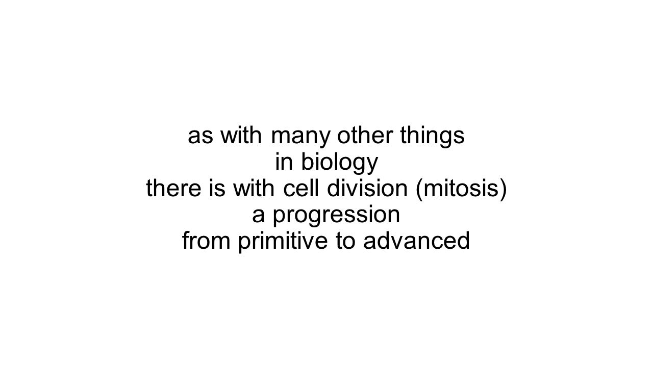 as with many other things in biology there is with cell division (mitosis) a progression from primitive to advanced