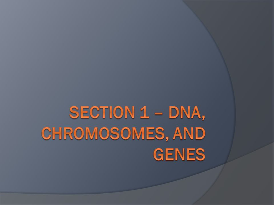 1.DNA, genes, and chromosomes compose the molecular basis of heredity.