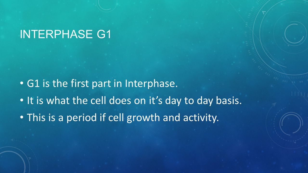 INTERPHASE G1 G1 is the first part in Interphase.