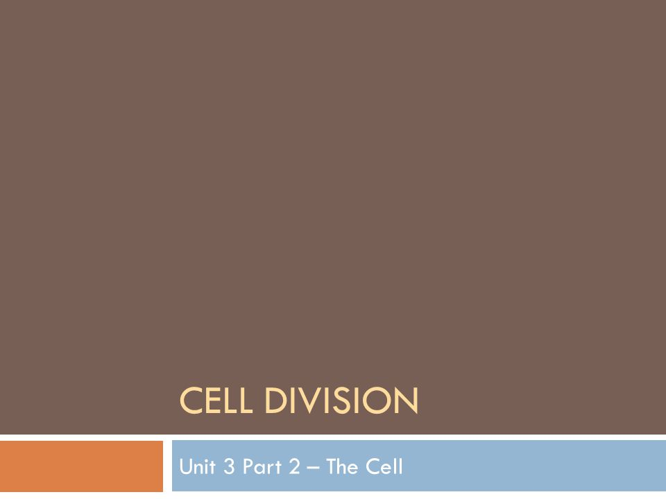 CELL DIVISION Unit 3 Part 2 – The Cell
