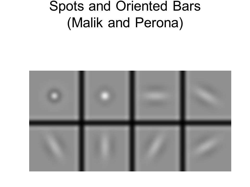 Spots and Oriented Bars (Malik and Perona)