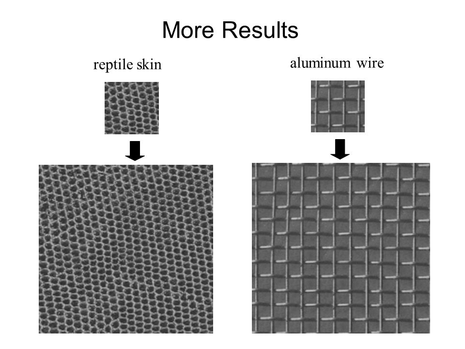 More Results aluminum wire reptile skin