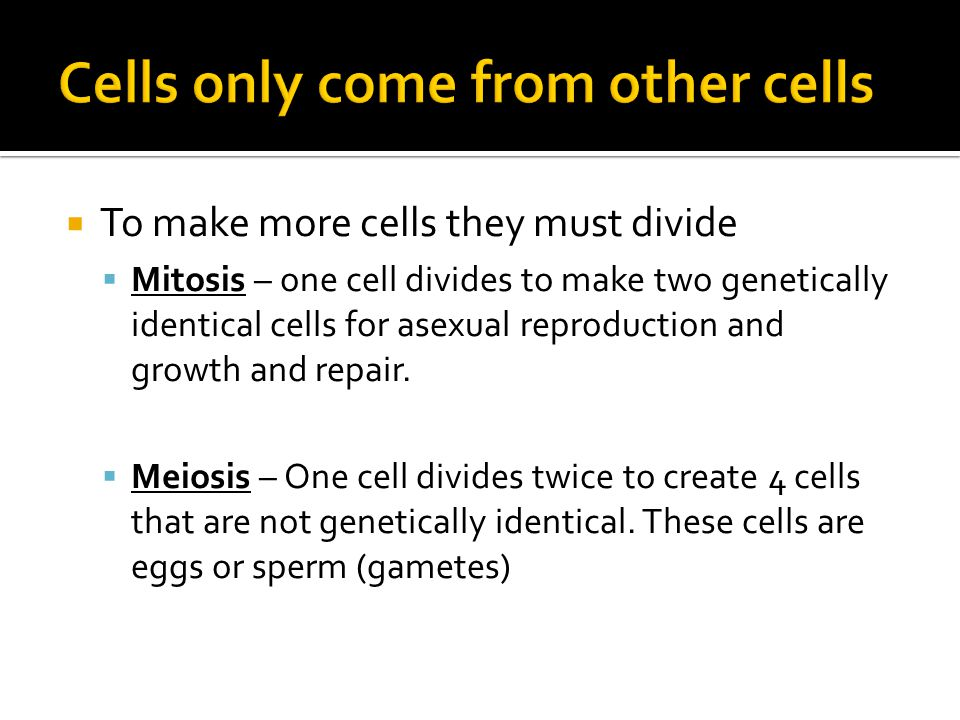  1.Crossing over – creates chromosomes that are mosaics of both maternal and paternal genes.