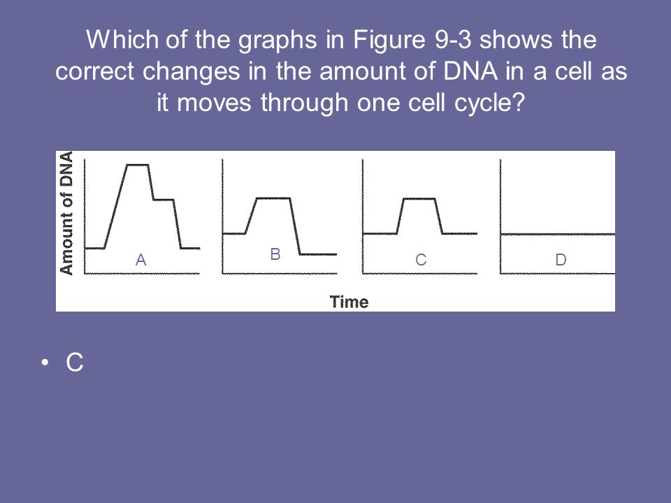 Which of the graphs in Figure 9-3 shows the correct changes in the amount of DNA in a cell as it moves through one cell cycle? C AA B CD