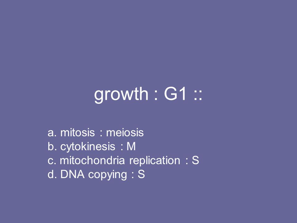 growth : G1 :: a. mitosis : meiosis b. cytokinesis : M c. mitochondria replication : S d. DNA copying : S