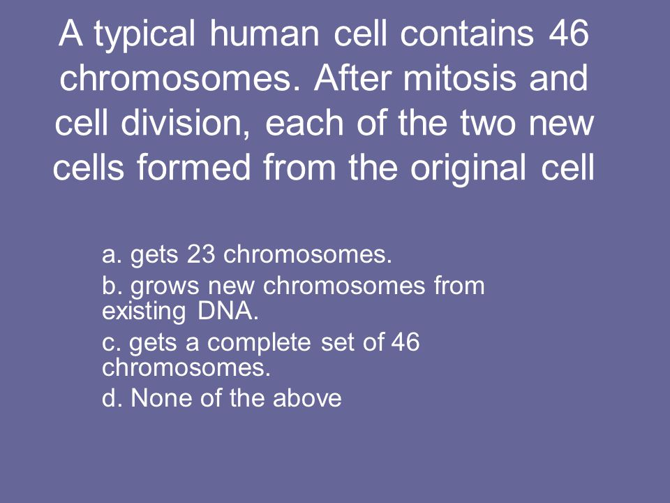 A typical human cell contains 46 chromosomes. After mitosis and cell division, each of the two new cells formed from the original cell a. gets 23 chro