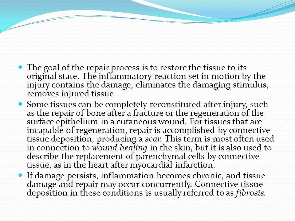 The goal of the repair process is to restore the tissue to its original state. The inflammatory reaction set in motion by the injury contains the dama